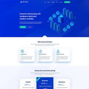 Divi Hosting Child Theme
