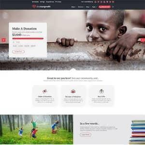 Divi donation theme