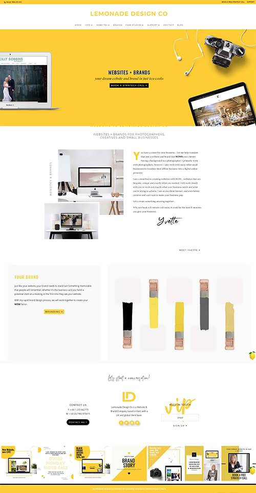 Lemonade Webdesign Development