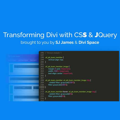 Transforming Divi with CSS JQuery