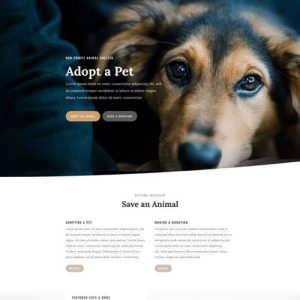 animal shelter landing page