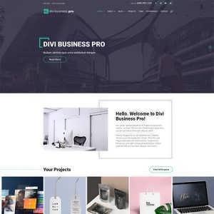 divi business pro
