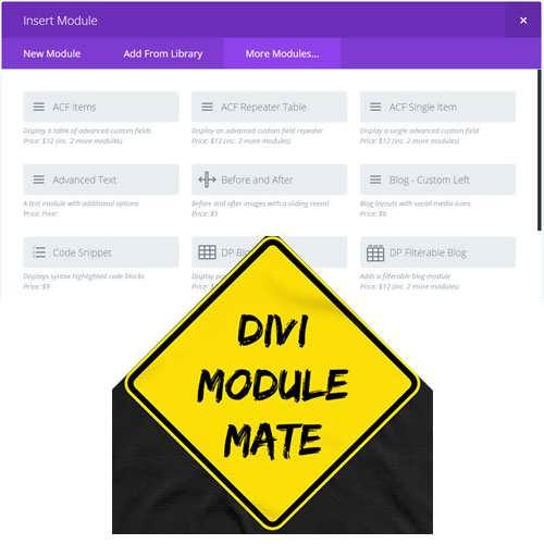 divi module mate