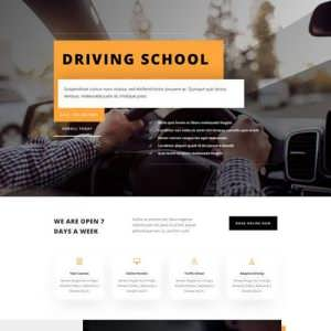 driving school landing page