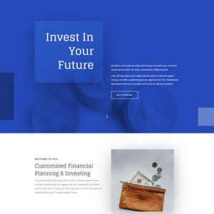 investment company landing page scaled