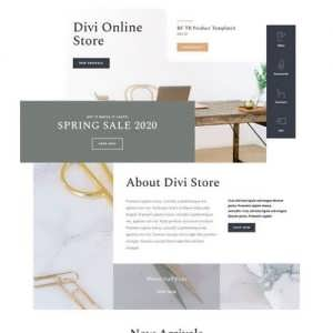 online store landing page