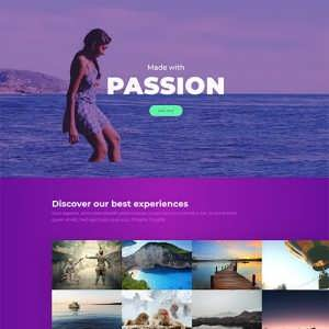 passion free divi layout