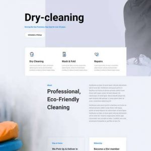 dry cleaning landing page